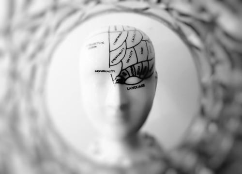 脳のイメージ